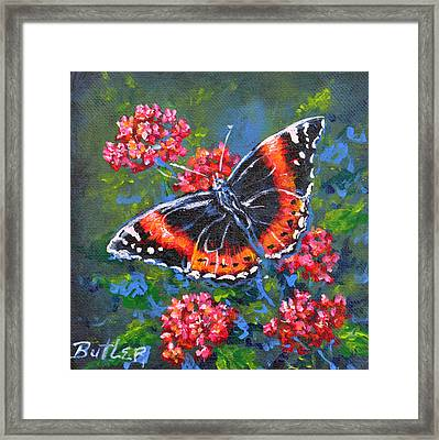 Red Admiral Framed Print by Gail Butler