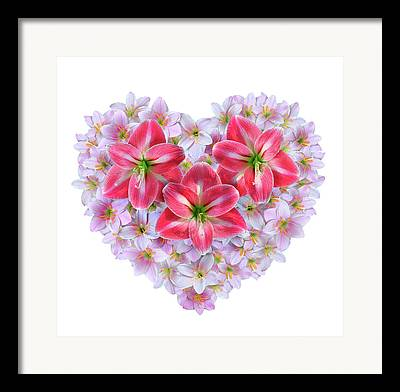 Fairy Hearts Pink Flower Framed Prints