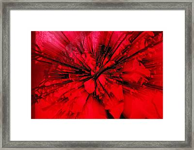 Framed Print featuring the photograph Red And Black Explosion by Susan Capuano