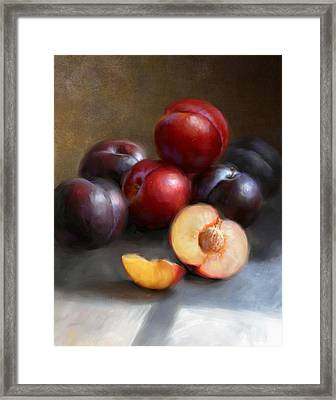Red And Black Plums Framed Print