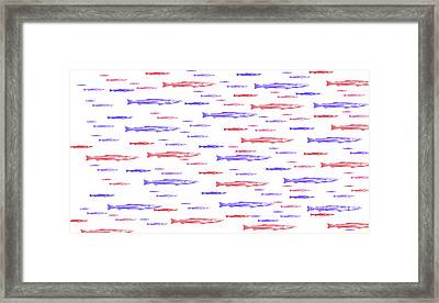 Red And Blue Fish Pattern Framed Print