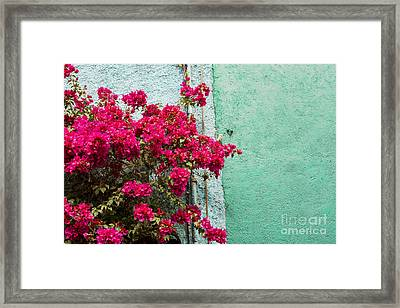 Red And Blue Framed Print by Juli Scalzi