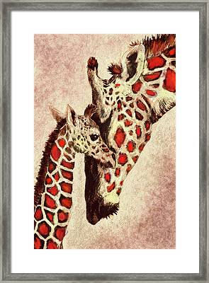 Red And Brown Giraffes Framed Print