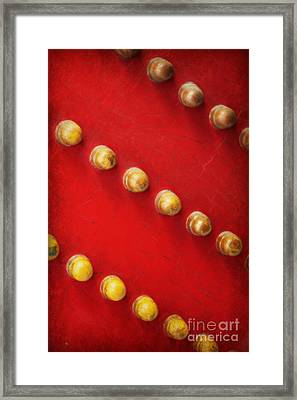 Red And Gold Chinese Door Framed Print by Carol Groenen