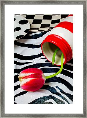 Red And White Jar With Red White Tulip Framed Print