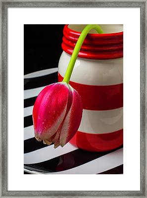 Red And White Jar With Tulip Framed Print