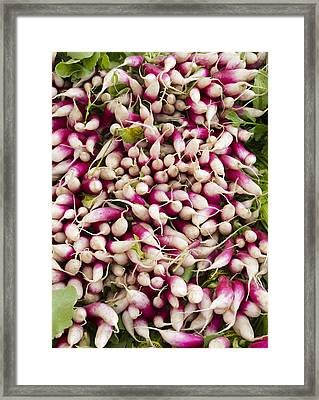 Red And White Radishes Framed Print by John Trax