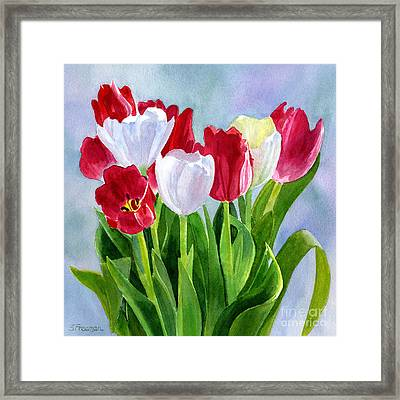 Red And White Tulip Bouquet Framed Print
