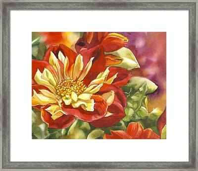 Red And Yellow Dahlias Watercolor Framed Print