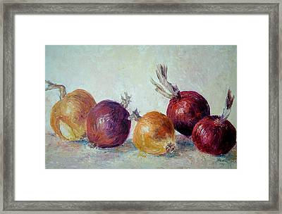 Red And Yellow Onions Framed Print