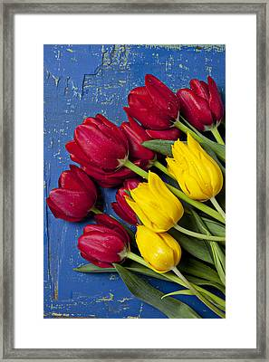 Red And Yellow Tulips Framed Print by Garry Gay