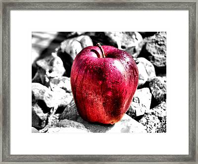 Red Apple Framed Print