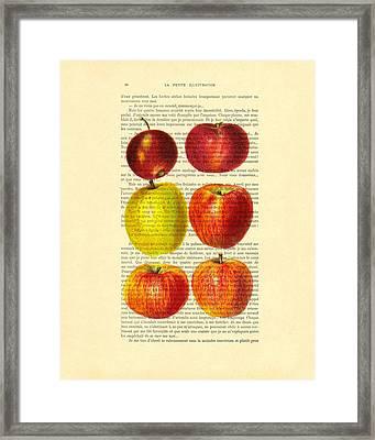 Red Apples Still Life Vintage Illustration Framed Print