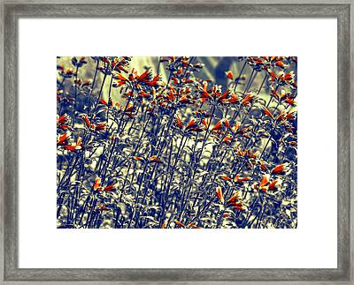 Framed Print featuring the photograph Red Army by Wayne Sherriff