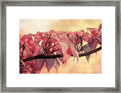 Red Autumn Day Framed Print by Angela Doelling AD DESIGN Photo and PhotoArt
