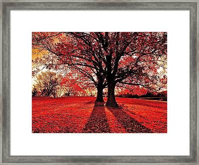 Red Autumn Framed Print by E Robert Dee