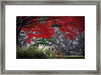 Red Autumn Framed Print by Eena Bo