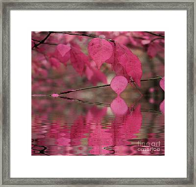 Red Autumn Leaf Reflections Framed Print by Judy Palkimas