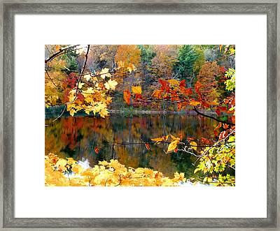Red Autumn Leaves Reflecting In The Water 1 Framed Print by Lanjee Chee