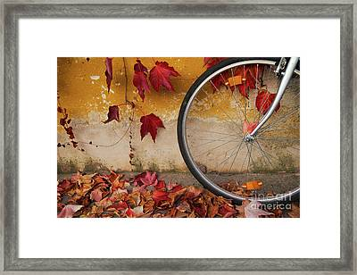 Framed Print featuring the photograph Red Autumn by Yuri Santin