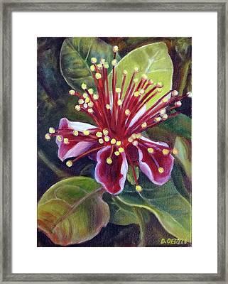 Pineapple Guava Flower Framed Print