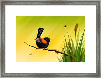Framed Print featuring the digital art Red Backed Fairy Wren by John Wills