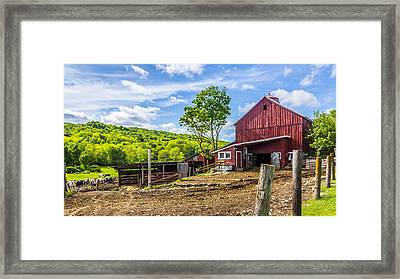 Framed Print featuring the photograph Red Barn And Cows by Paula Porterfield-Izzo