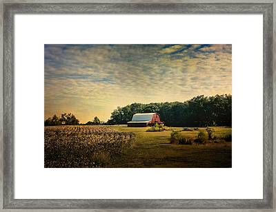 Red Barn At The Cottonfield Framed Print by Jai Johnson