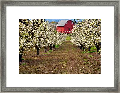 Red Barn Avenue Framed Print by Mike  Dawson
