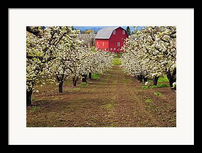 Hood River Framed Prints