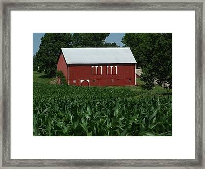 Red Barn Corn Framed Print