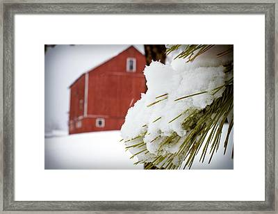 Red Barn Study Iv Framed Print by Tim Fitzwater