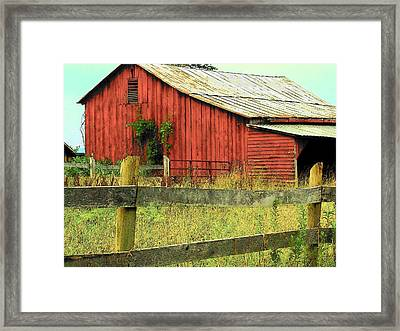 Red Barn With Vines Framed Print by Michael L Kimble
