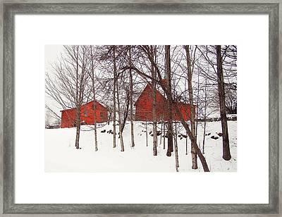 Red Barns Framed Print by Betsy Zimmerli