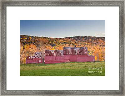 Red Barns Framed Print by Susan Cole Kelly