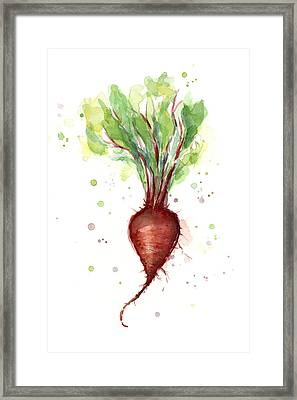 Red Beet Watercolor Framed Print