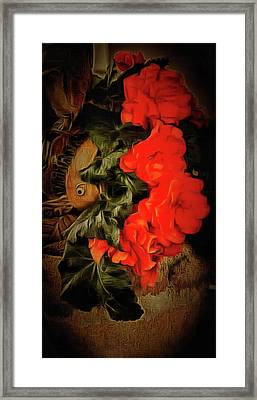 Framed Print featuring the photograph Red Begonias by Thom Zehrfeld