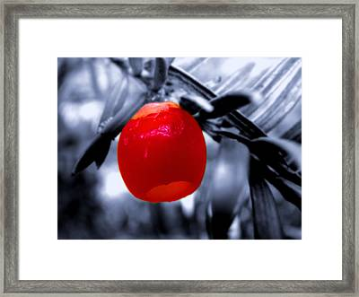 Red Bell Framed Print by Roberto Alamino