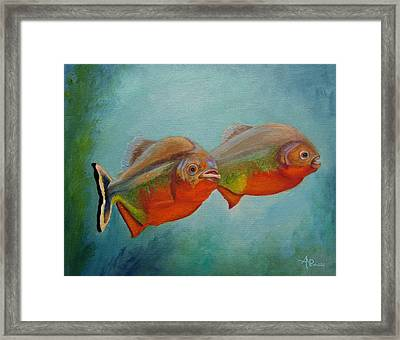 Red Bellied Fish Framed Print
