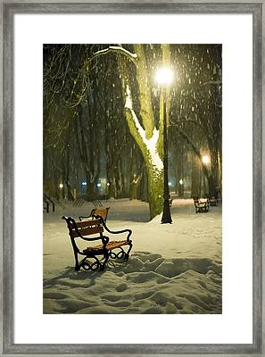 Red Bench In The Park Framed Print
