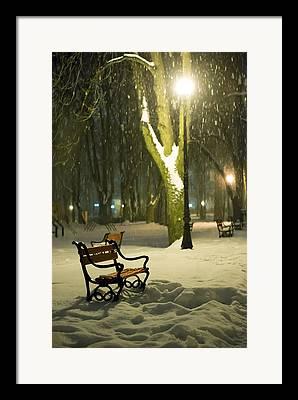 Park Scene Framed Prints