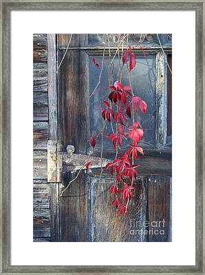 Red Framed Print by Bernadette Kazmarski