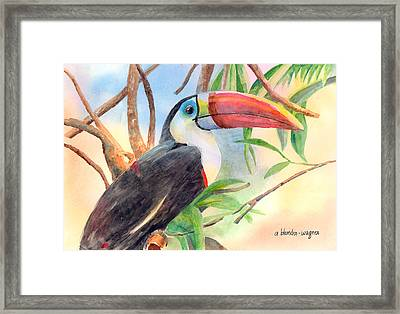 Red-billed Toucan Framed Print by Arline Wagner