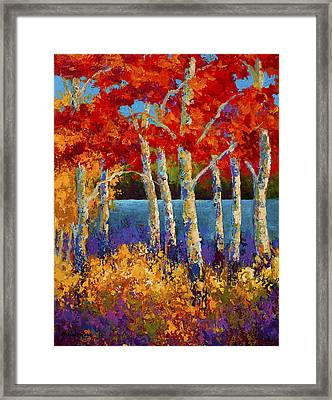 Red Birches Framed Print by Marion Rose