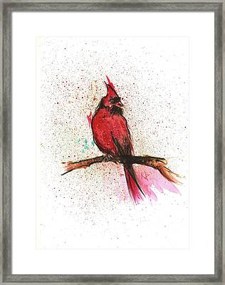 Red Bird Framed Print by Remy Francis
