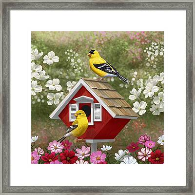 Red Birdhouse And Goldfinches Framed Print