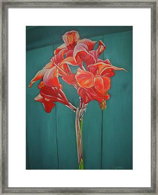 Red Bloom Framed Print by John Keaton