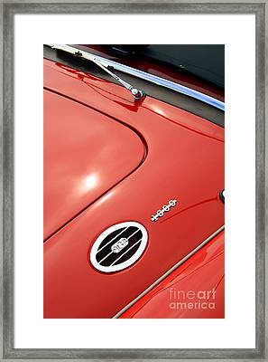 Framed Print featuring the photograph Red Bonnett by Stephen Mitchell