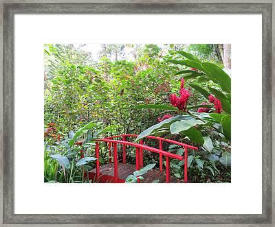 Red Bridge Framed Print by Teresa Wing