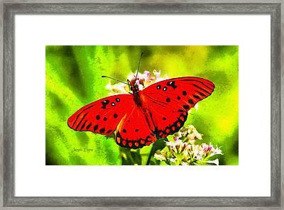 Red Butterfly Framed Print by Leonardo Digenio